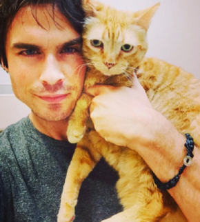 cute-celebrity-guys-with-cats-ian-somerhalder-6