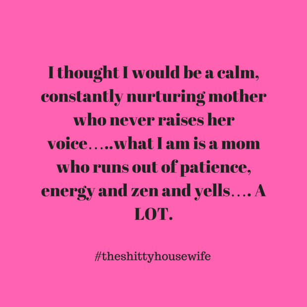I thought I would be a calm, constantly nurturing mother who never raises her voice…..what I am is a mom who runs out of patie